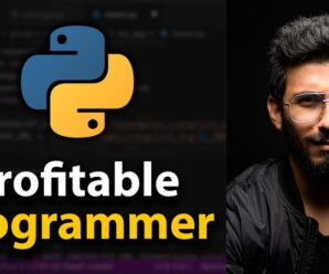 Clever Programmer – The Profitable Programmer